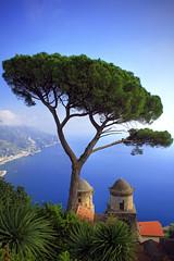(Alberto Quiones) Tags: italia italy ravello campania salerno villarufolo amalficoast belvedere europa europe costieraamalfitana costaamalfitana marmediterraneo mediterraneo