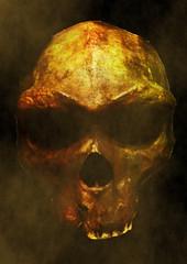 Calavera (Alvaro.Moreno) Tags: calavera skull