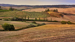 Farmhouse Belvedere, Val d'Orcia, Tuscany (flowerikka) Tags: italy toskana tuscany valdorcia belvedere hills cypressen landscape