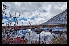 Summit Lake Park, CO (pmenge) Tags: mato ice gelo agua neve snow co summitlakepark 14mm xt1