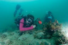 se3500_IMG_1093 (OKANO14) Tags: hong kong scuba diving