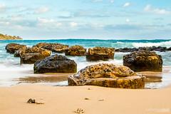Anahola Pier Kauai (Katherine Shah) Tags: ocean beach water hawaii pier waves kauai anahola
