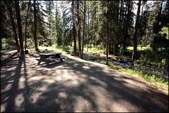 Perfect Campsite - Canadian Rockies (greenthumb_38) Tags: canada reunion rockies canadian alberta 2012 canadianrockies jeffreybass august2012 moseankoreunion