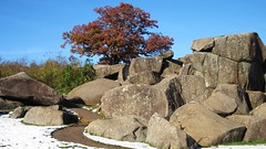 Devil's Den rocks: Gettysburg Battlefield (Msanders55) Tags: autumn snow oak fallcolor pennsylvania gettysburg geology battlefield lonetree devilsden
