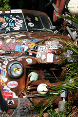 Rusted Pick-up - Key West, Florida (Andrew_Simpson) Tags: old usa color classic chevrolet america us rust colorful colours bright florida stickers rusty american rusting fl colourful keywest floridakeys keywestflorida thefloridakeys worldcars chevroletpickup chevroletpickuptrucker