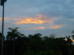 Pastaza, Ecuador (Stefan Peerboom) Tags: night cloudy jungle regionwide puyopuyango