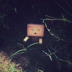 Danbo in Terminator's Uniform, Between Grass :) (Alboali313) Tags: college grass square squareformat terminator iphone danbo iphone5 danboard danboo iphoneography iphoneonly instagramapp danbour collegeoftechnological