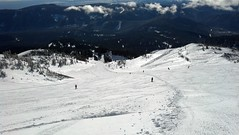 2013-03-07_09-40-04_978 (MtHoodMeadows) Tags: snow bluebird mthoodmeadows newsnow powdergallery