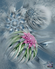 The Last Snowball Fight (Smoke Art #667) (Psycho_Babble) Tags: snow abstract ice smoke incense smokeflower smokeart smokephotography smokephoto creativesmoke smokesphereskinda