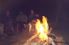 Nameri NP, Tezpur, Assam, India (east med wanderer) Tags: india assam tezpur ecocamp namerinationalpark potasali theindiatree