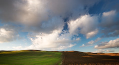 Divided (Philipp Klinger Photography) Tags: italien blue light sunset shadow sky italy cloud brown white color colour green nature colors field clouds landscape evening nikon colorful warm italia colours angle earth horizon hill wide warmth wideangle hills tuscany colourful split division agriculture toscana philipp rollinghills divided divide apart separation d800 toskana erde separate klinger seperated dcdead nikond800 philippklinger