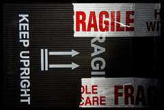 "2013_365087 - Ragile • <a style=""font-size:0.8em;"" href=""http://www.flickr.com/photos/84668659@N00/8597408807/"" target=""_blank"">View on Flickr</a>"