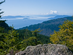 Top of the Nameless Knoll. Oyster Dome via Blanchard, 3/29/13, Bellingham WA
