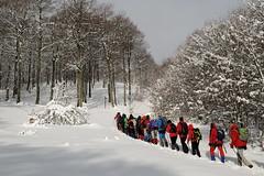 Mendian (Paulo Etxeberria) Tags: snow nieve neige elurra navarra nafarroa urkiaga quintoreal kintoa clubvascodecampingelkartea