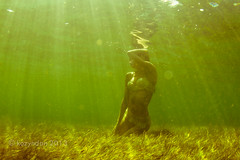 Bellentina at Rickett's Point (kozyndan) Tags: ocean summer woman beauty model underwater australia melbourne lingerie seagrass toribellentina toriwoodseagrass