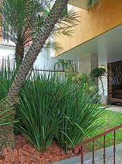 Edifício Jardins IV