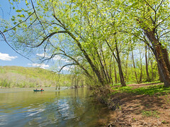 River Escape (JacquiTnature) Tags: trees water spring canoe shenandoahriver jacquit