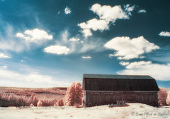 Le Pays des Chimres (Sous l'Oeil de Sylvie) Tags: trees sky clouds barn rural canon ir spring ciel arbres qubec infrared nuages campagne printemps grange beauce g11 modifi infrarouge 2013 conifres stsimon sousloeildesylvie