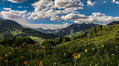Colorado 2016 (Hooker771) Tags: mt crested butte gothic panoramic clouds weather flower wild