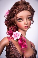 Royal Dessert (Amadiz) Tags: amadiz amadizstudio wig wigs bjd abjd doll iplehouse tan rexy