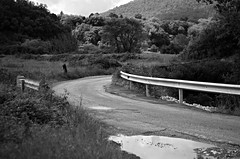 country road impression (SS) Tags: ss pentax k5 spring 2016 landscape pond lazio italy smcpentaxm50mmf17 blackandwhite monochrome depthoffield bend curve trees forest sky field grass guardrail