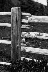 The Fence (r.antonitsch) Tags: alm dinge grenze holz zaun alp fence wood