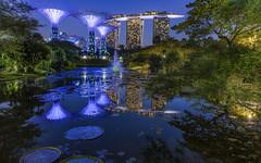 Broken Reflections @ Gardens by the Bay (arunrnair) Tags: nikkor1424f28 nightscapes singapore singaporenights nikond750 gardensbythebay marinabay marinabaysands nikon d750 marina bay sands
