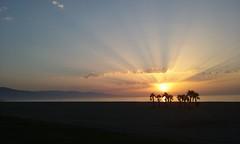 Amanecer en Roquetas de Mar (Oliventino) Tags: espaa almeria europa spain andalucia andalusia andalousie europe lespagne leurope spanien spanha roquetas de mar playa beach strand plage la spagna    oliventino sun sea