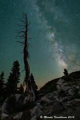 Sierra Night Magic - Among the Stars (Marsha Kirschbaum) Tags: graniteboulders granite sonya7rii tree hwy88 airglow nightstars astrolandscape sierras milkyway landscape starrysky marshakirschbaum