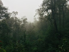 IMG_9125 (Seif Sallam) Tags: travel vietnam sapa fansipan hiking trekking