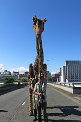 Dolly (lady.bracknell) Tags: puppet giraffe flyover churchillwayflyover friendsoftheflyover puppeteers liverpool vippuppets dollythegiraffe