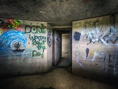 zullen we doen . (roberke) Tags: bunker woii graffiti paint beton concrete denhoorn loodsmansduin texel waddeneiland netherlands nederland outdoor