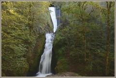 {Bridal Veil Falls - I.} (Wolverine09J ~ 1 Million + Views) Tags: oregonsummer16 bridalveilfalls scenicbyway landscape waterfall nature flora forest rockface naturespoetry~level1 naturespotofgoldlevel1 naturesgallery