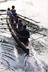 IMG_3184 (Hans Heijnen) Tags: dds regatta