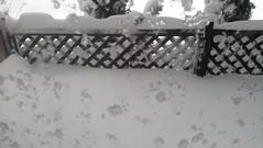 porch (amalkoff) Tags: snow storm nemo snowstorm coastal