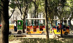 Parque Espaa Transport (Carl Campbell) Tags: park train mexicocity parqueespaa