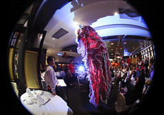 New Year's Eve : Lion Dance. (Clement Tang ** busy **) Tags: australia melbourne chinesenewyear victoria celebration backlit newyeareve lunarnewyear liondance nationalgeographic fisheyelens doncastereast concordians taipanrestaurant
