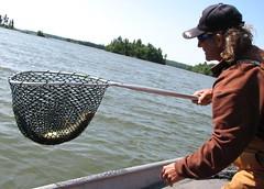 4145 (Marbeck53) Tags: trip travel lake fish ontario canada man male net water canon person islands boat wayne shades powershot human cap guide eaglelake s3is marbeck53 markriesenbeck