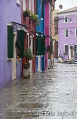 burano (milena boeva) Tags: venice italy island burano brighthouse veniceburanocolourhousesitaly wwwmilenaboevacom