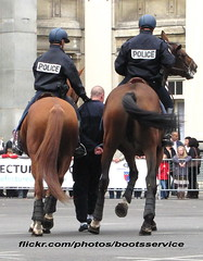 bootsservice 12 7663 R (bootsservice) Tags: horses horse cheval spurs uniform boots police gloves cavalier uniforms rider handcuffs arrest policeman bottes riders chevaux uniforme policemen cavaliers policier arrestation uniformes menottes gants policiers police riding boots eperons nationale