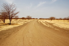 Road in short grass savanna woodland- Sudan (UNEP Disasters & Conflicts) Tags: sudan africa unepmission peace development conflict disaster climatechange environment drought poverty unep unenvironment