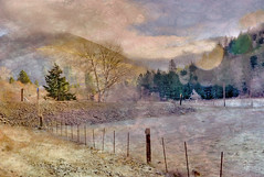 Icy Morning (h_roach) Tags: winter painterly cold horizontal rural outdoors country explore pasture textureart