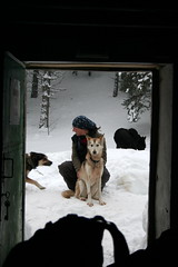 (<lullaby>) Tags: montagne hiver musher vercors moutain ucpa trappeur chiensdetraneau