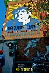 biggie (Nol C) Tags: city nyc streetart ny newyork brooklyn mural badboy bk biggie stevepowers notrays