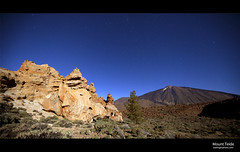 Mount Teide (esslingerphoto.com) Tags: longexposure moon mountain tree rock night canon photography volcano evening europe long exposure shot nightshot single tenerife moonlight 5d nightshots volcanic formations canaryisland mountteide esslinger esslingerphotocom