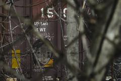 BJORN (Rob Swatski) Tags: street railroad woman streetart art girl face car train fence bench graffiti nikon paint grafitti streak head pennsylvania tag graf rail trains tags pa railcar spraypaint boxcar graff railways hobo railfan freight bjorn freighttrain freights rollingstock fr8 monikers moniker hobotag benching freighttraingraffiti swatski d7000 nikond7000