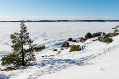 Winter beach (JarkkoS) Tags: winter snow cold ice beach water finland landscape turku d800 ruissalo 2470mmf28g finlandproper