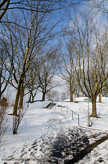 Winter 13 (Incbi) Tags: photography foto fotografie hdr incbi