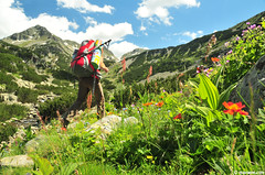 summer paradise (.:: Maya ::.) Tags: flowers summer woman mountain green nature beauty trekking peak bulgaria valley backpack hiker   pirin