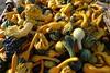 Gourd cornucopia